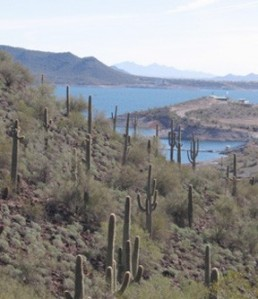 Lake Pleasant, northwest of Phoenix