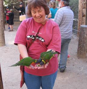 Gayle_ParrotFeeding_