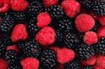 berries jpeg