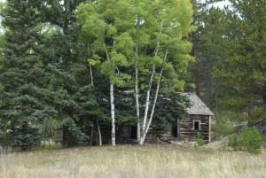 cabin wp 09 1