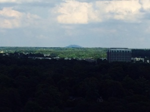 Stone Mountain in the distance