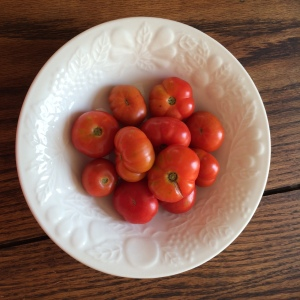 I bought these at the Farmer's Market. Aren't they cute? I've never seen knobby tomatoes this small before.