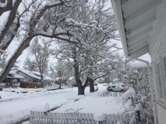 March 2016 snow_neighborhood