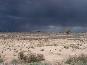 Desert rain comes to desert