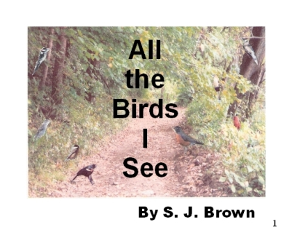 All the Birds I See Cover