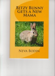Bitzy Bunny Book Cover