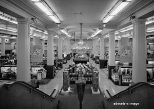 Main floor O'Neil's