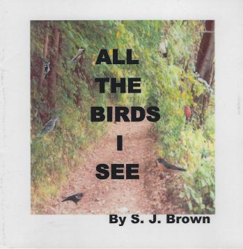all the birds I see