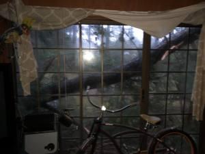 Alan hurricane damage